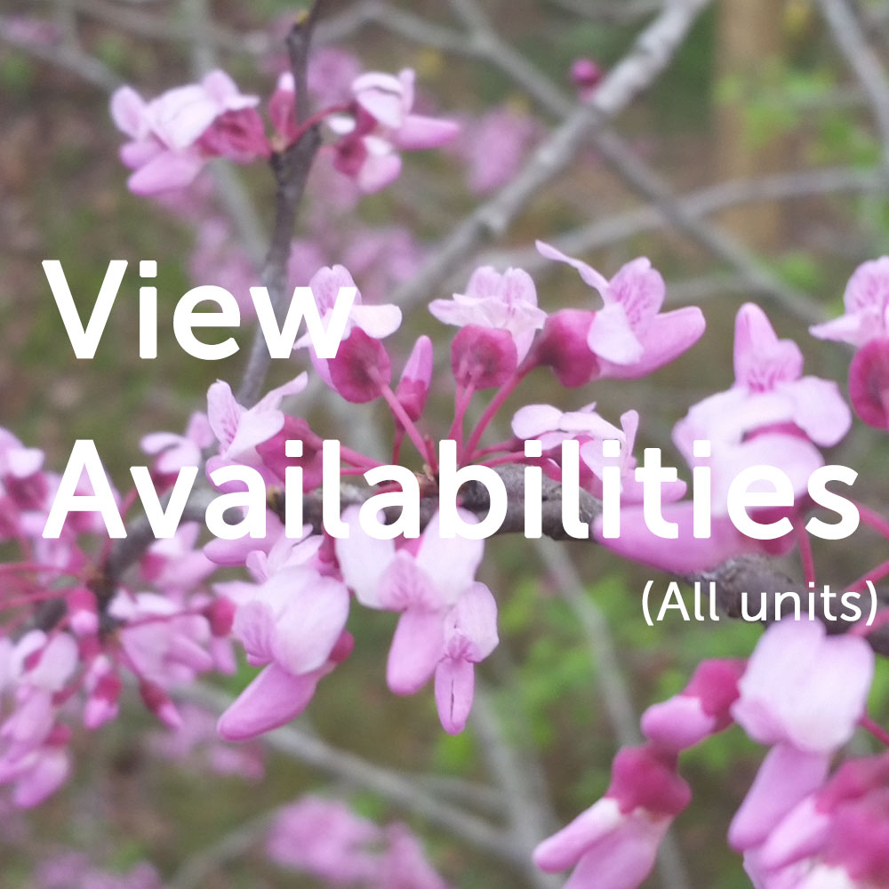 View Availabilities