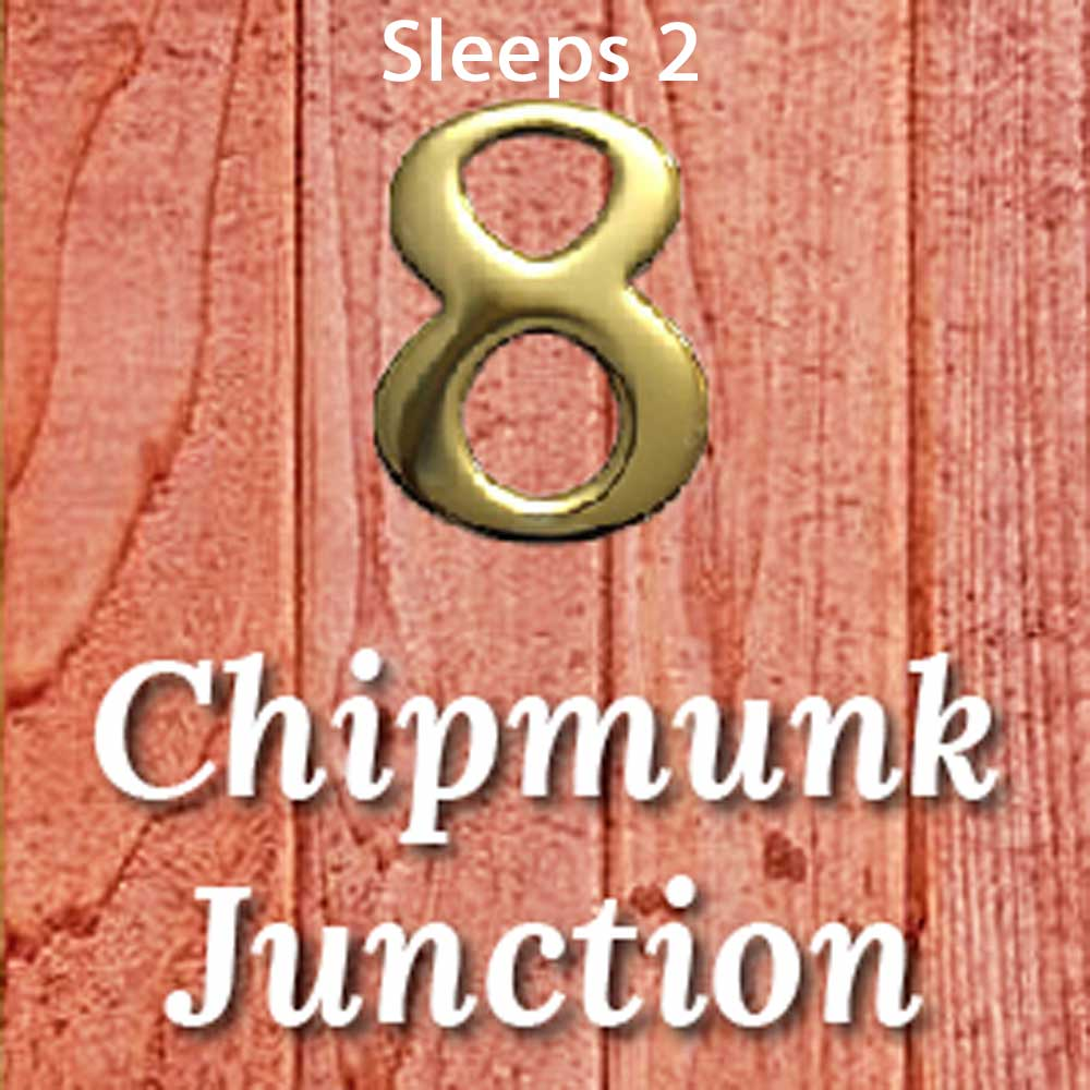 Unit 8 The Chipmunk Junction